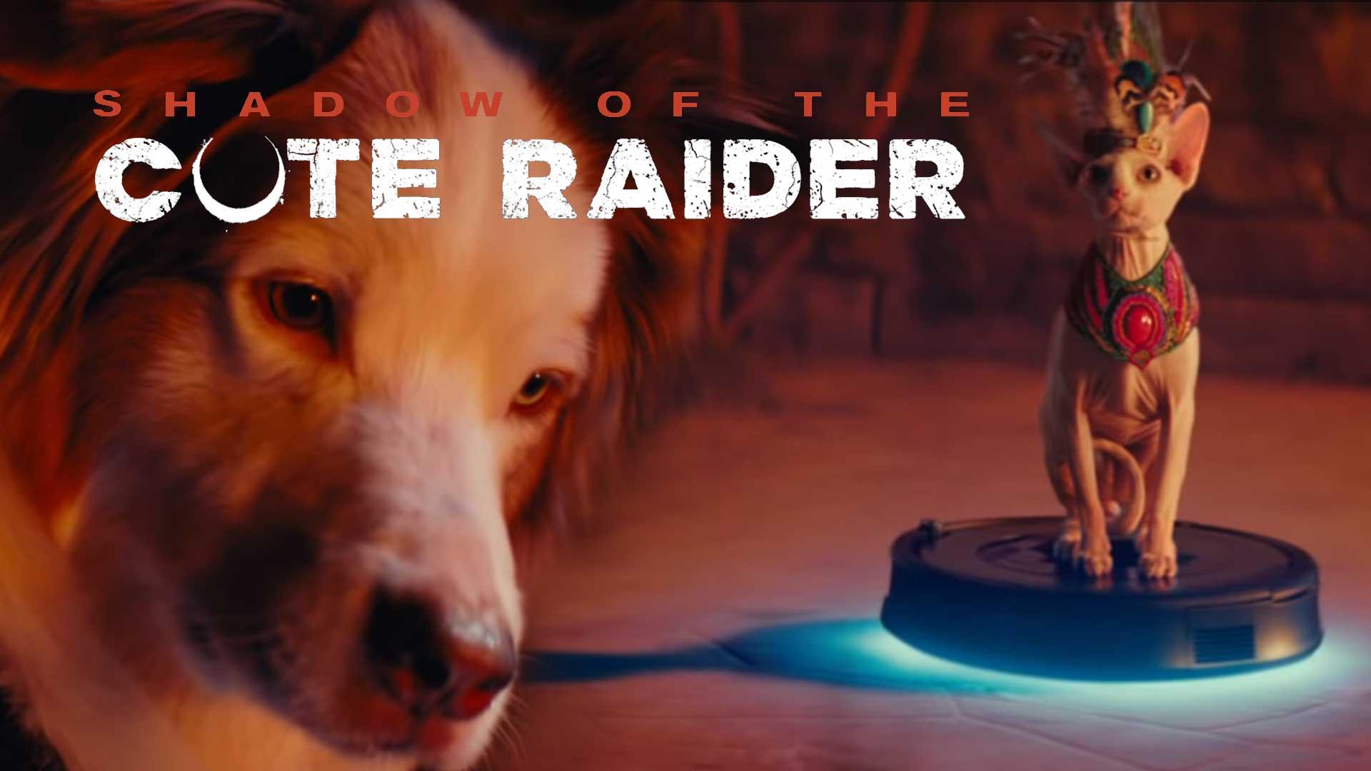 shadow of the cute raider