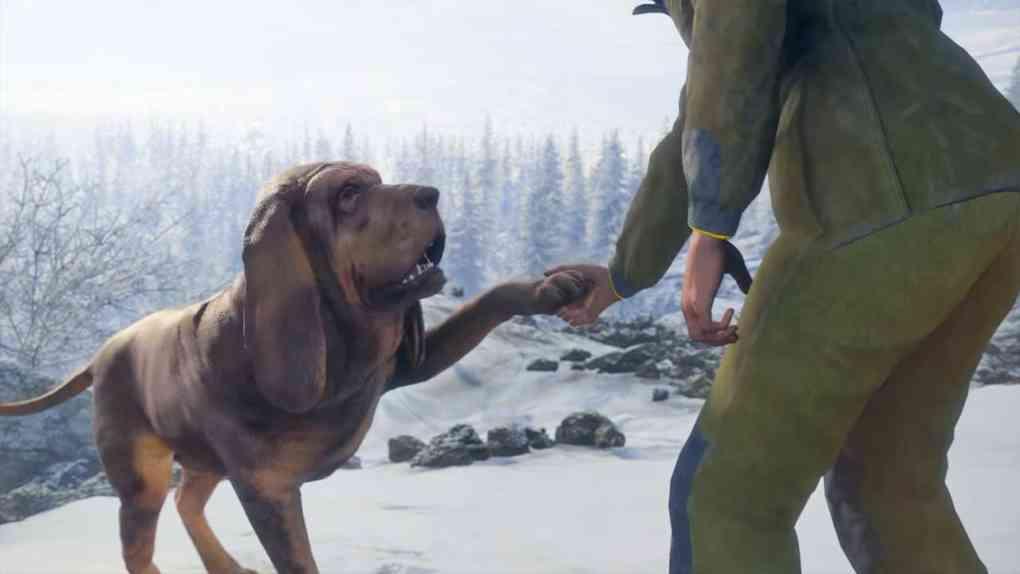 thehunter cotw bloodhound dlc 2