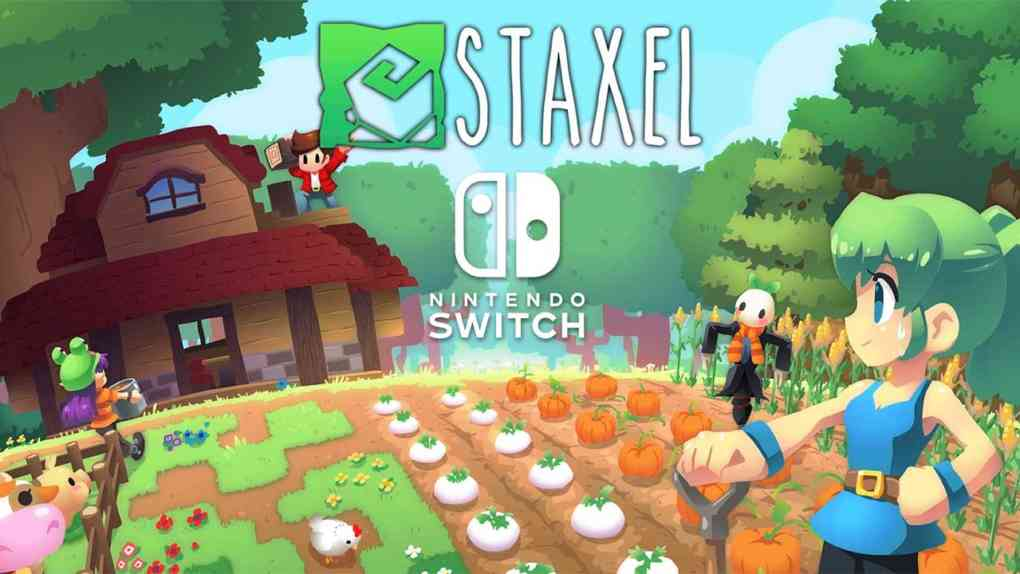 staxel switch version